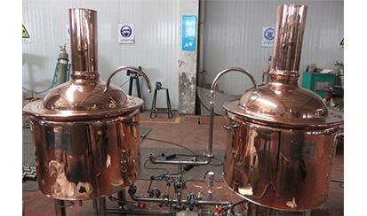 100L Mini Brewery system