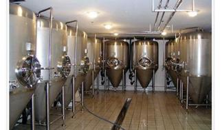 Prospects for Development of Small Brewed Beer Equipment