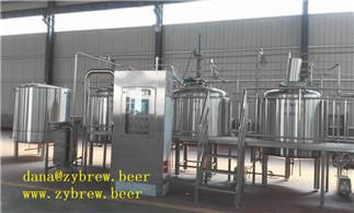 Complete 1000L Brewing Line