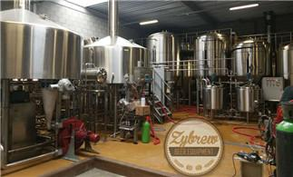 30HL Brewery System Installed in The Netherlands