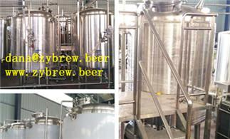 Is The Whole Brewing Equipment Expensive?