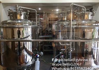 300L micro brewery system for Australia clients