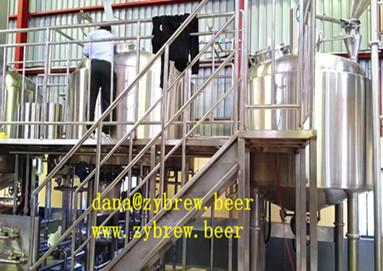 Installing 2000L brewery project in Africa market