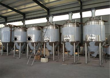 Why Choose Our Fermenters