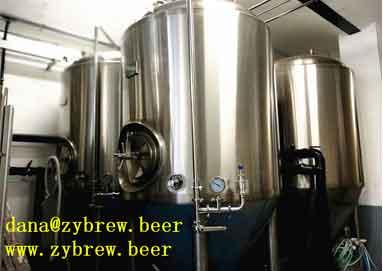 1000L Brewery System Installed In Germany