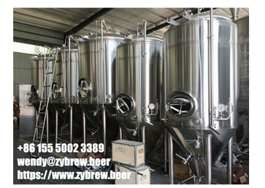 Special Design And Customized Micro Brewery System For North America Market