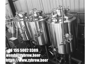 Full Set Of 3BBL Micro Brewery System For North America Market