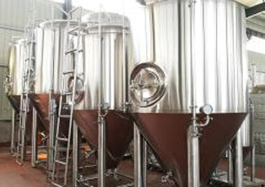 What are the Main Advantages of Fermentation Equipment?