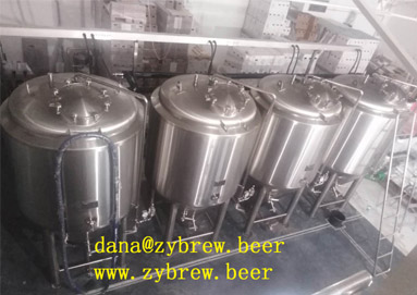 2000L Brewery System in Beaurainville, France