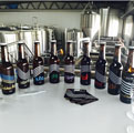20HL Micro brewery Project-Sweden-2015