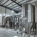 40HL Micro Brewery Project-Romania-2018