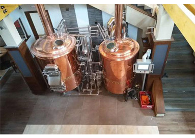 How to Choose the Right Yeast Strain for Beer Brewing?