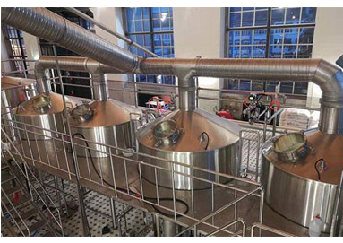 What are the Requirements for Wort Before Fermentation of Industrial Beer?
