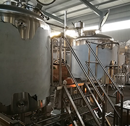 600L Micro Brewery Project-USA-2018